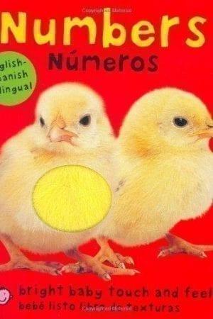 NUMBERS/ NUMEROS