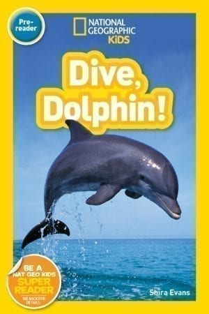 DIVE DOLPHIN