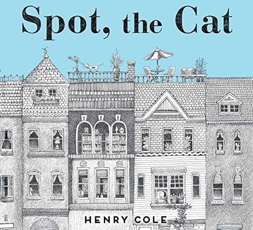 SPOT THE CAT