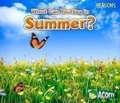 WHAT CAN WE SEE IN SUMMER